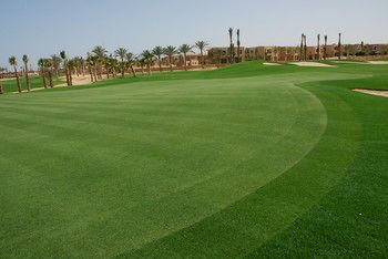 Jaz Little Venice Golf Resort - фото 18