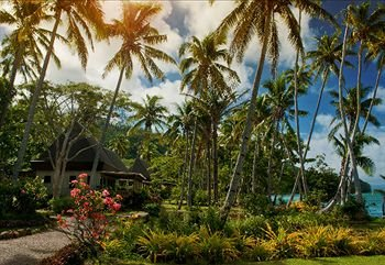 Lalati Resort & Spa - фото 15