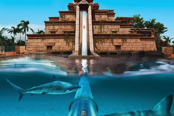 Atlantis The Palm, Dubai - фото 20