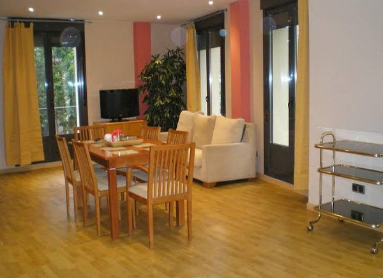 Apartamentos Plaza Espana Deluxe - фото 5