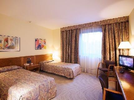 Hotel Sercotel Domo - фото 2