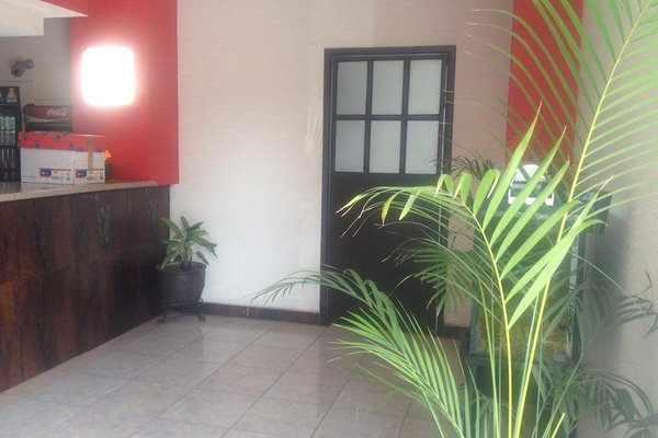 Hotel La Paz - фото 13