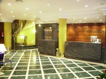 Hotel Amadeus - фото 16