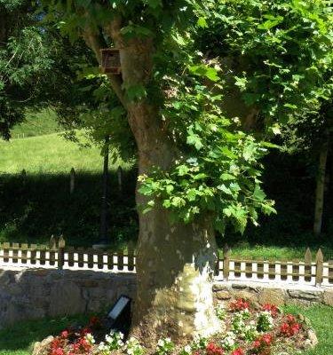 Hotel Rural Irigoienea - фото 18