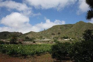 Finca El Vergel Rural - фото 19