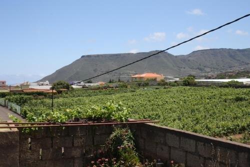 Finca El Vergel Rural - фото 20