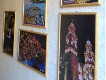 Hotel Casa Galeana - фото 15