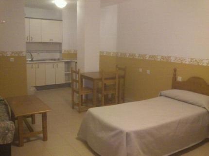 Apartamentos Puerta del Sur - фото 11