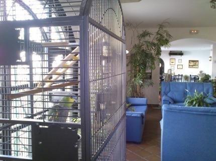 Apartamentos Puerta del Sur - фото 18