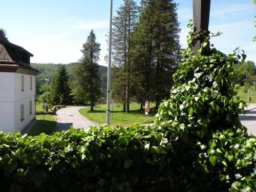 Hotel Lesni dum - фото 21