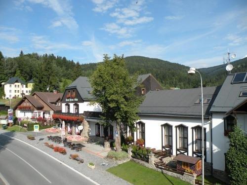 Hotel Lesni dum - фото 22