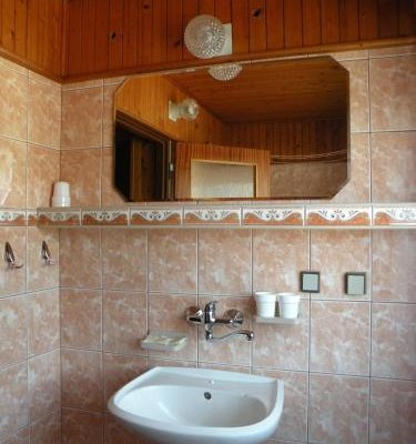 Hotel Lesni dum - фото 9