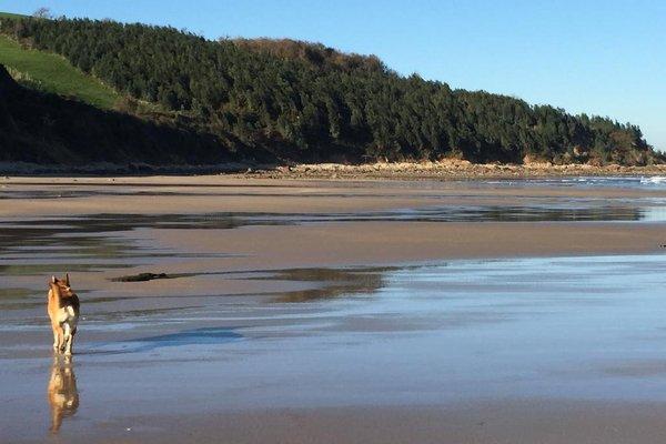 Bungalows Playa de Oyambre - фото 20