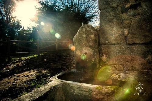 Abadia San Martin - фото 17