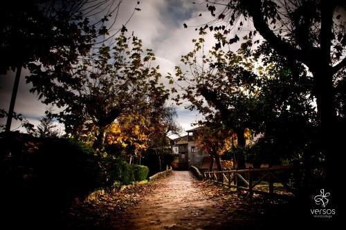 Abadia San Martin - фото 21