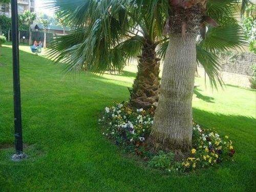 Residencial Ventura Park / Royal / Jerez - фото 19