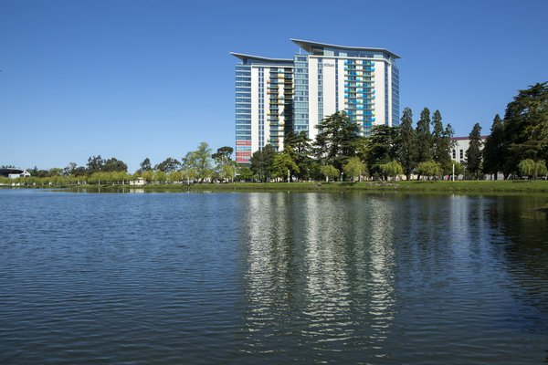 Hilton Batumi - фото 19