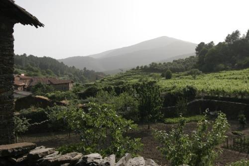 Casa Manadero - фото 19