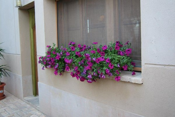 Hotel Muralleta - фото 16