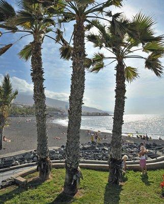 Sol Puerto Playa - фото 17
