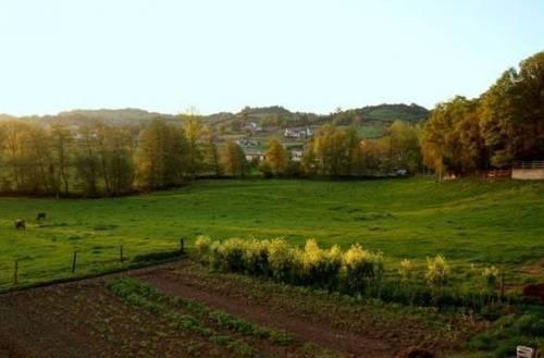 Hotel Rural El Calero - фото 17