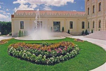 Hotel ATH Ribera del Duero - фото 20