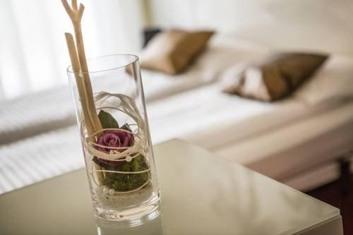 Wellness Hotel Casa Barca - фото 13