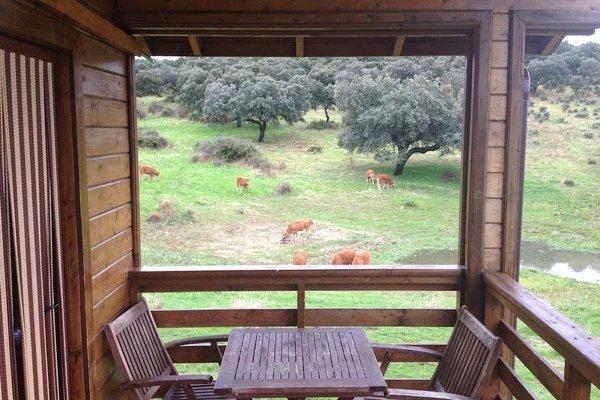 Complejo Rural Los Jarales - фото 11