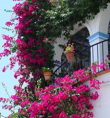 Pierre & Vacances Mojacar Playa - фото 18