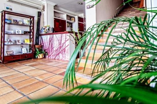 Hotel Albaida Nature - фото 50