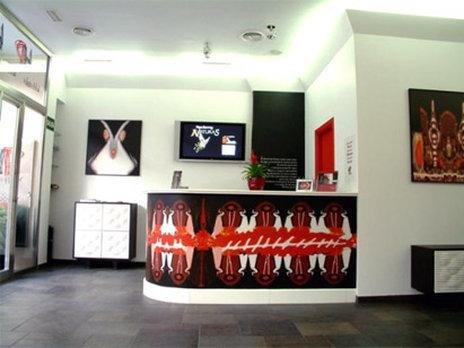 Hotel Del Pintor - фото 11