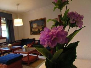 Hotel Mairena - фото 7