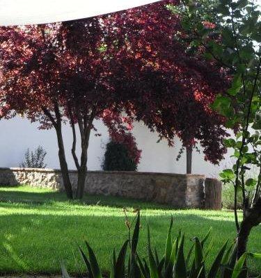 Casa Rural La Alameda - фото 12