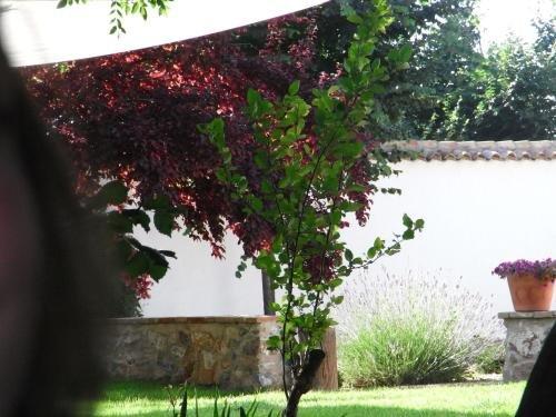 Casa Rural La Alameda - фото 7