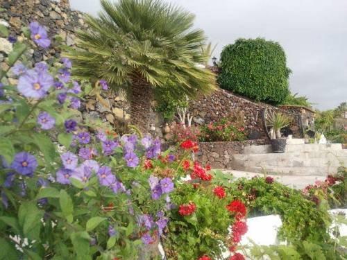 Apartamentos la Hacienda el Rancho - фото 20