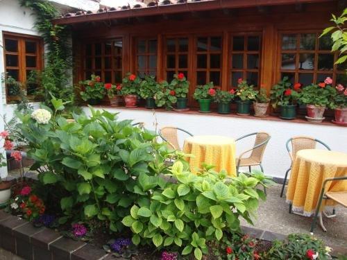 Hotel Montecristo - фото 19