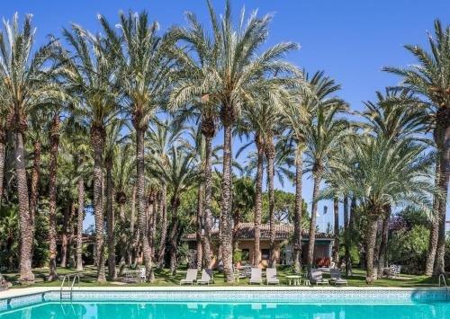 El Oasis Resort - фото 21