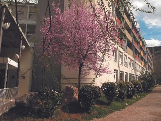 Hotel Sercotel Balneario Sicilia - фото 22