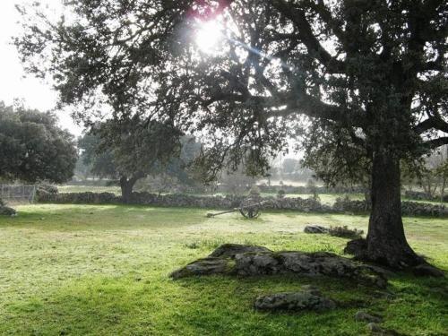 La Trocha De Hoyorredondo - фото 16