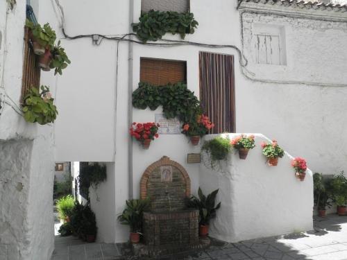 Hotel Juan Francisco - фото 17