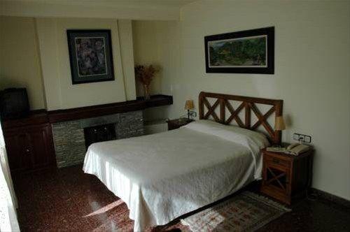Hotel Els Puis - фото 6