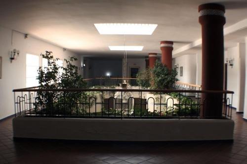 Hostal Puente del Rey Alojamientos Rocio Donana - фото 17