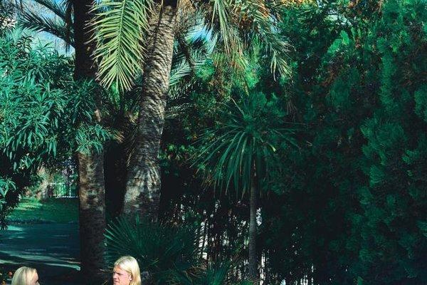 Palm Garden - фото 19