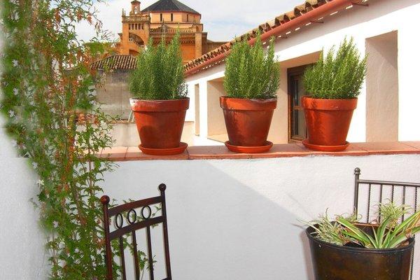 Apartamentos Los Patios de la Juderia - фото 5