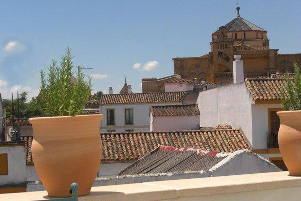 Apartamentos Los Patios de la Juderia - фото 8