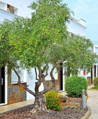 Apartamentos Piedramar - фото 20