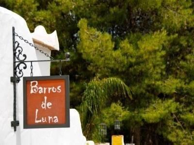 Barros de Luna - фото 16