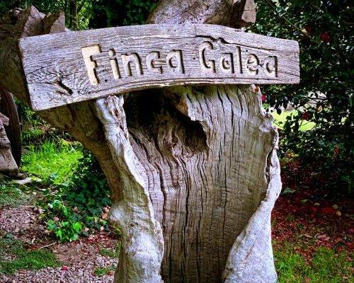 Finca Galea - фото 15