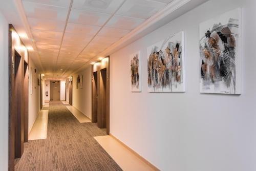 Hotel Baviera - фото 4