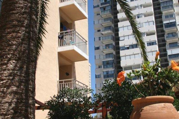 Apartamentos Palm Court - фото 50